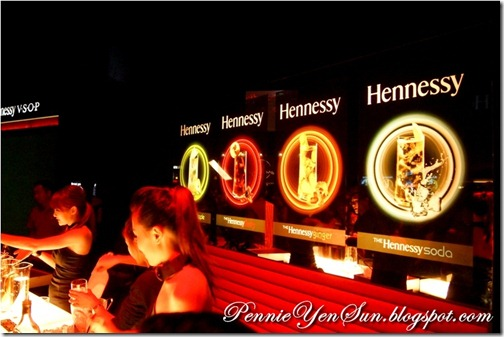 Hennessy Artistry Finale 2011 (13)