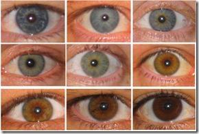 eyes-400_thumb[1]