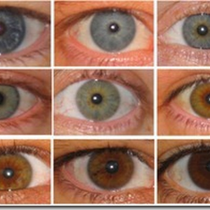 العين السوداء هى الملونة . وليست الزرقاء !ا
