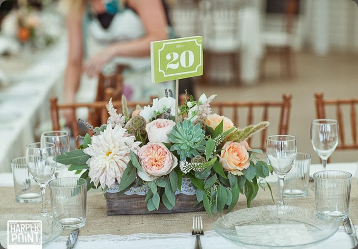 table number Centerpiece Cori Cook Floral Design SM Harper Point Photography