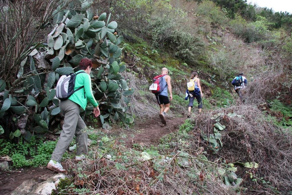 Senderistas en el senderos del Ciruelo.