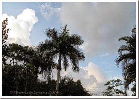 09-27-rain-cloudsjpg