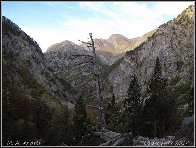 Llena Cantal 024
