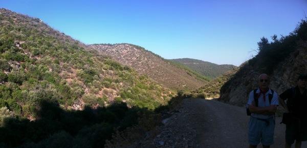 Hills Around Pedesa