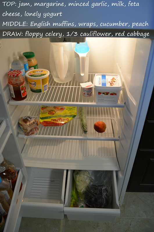 Empty Fridge.png