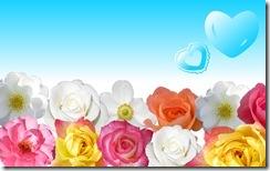 flowers-wallpaper-hd-download