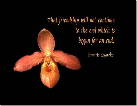 friendship_quote_08
