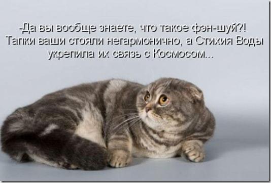 1313674071_kotomatrix_17