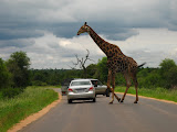 South Africa - 059.JPG