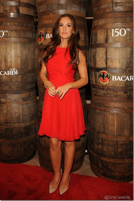 minka-kelly-dress-hot-7
