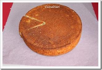 6-1-coca taronja peix-cuinadiari-9-1