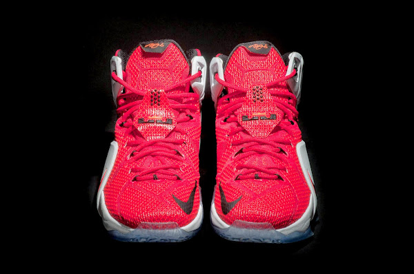 LeBron 12 8220Heart of a Lion8221 New Release Date in Europe