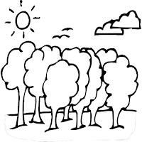 bomen-102.jpg