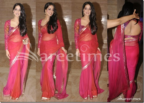 Mahi_Gill_Dual_Color_Net_Saree