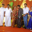 Cinematographer NS Udhayakumar Wedding Reception Photos (35).jpg