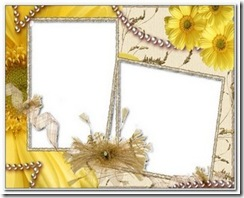 psd frame(11)