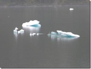 Alaskan Cruise 2 010