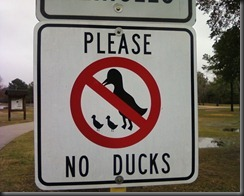 funny_sign_please_no_duck