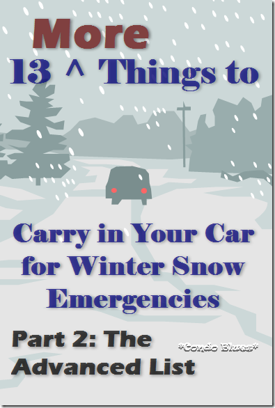 13morethingstocarryinyourcarforwinteremergencies