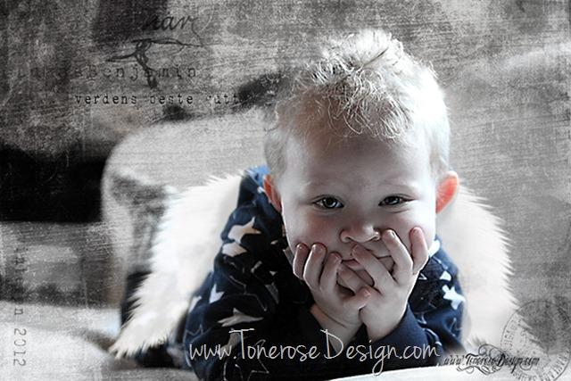 Lukas med vinger IMG_1123 tonerosedesign