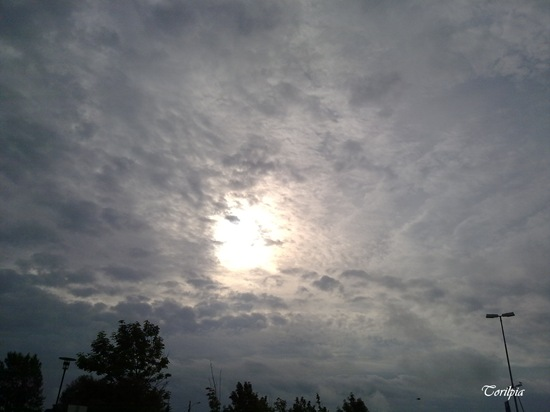 Nesten sol - nesten sommer