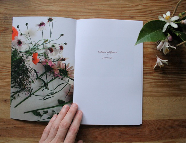 Jaime Rugh - Backyard Flowers Book 2
