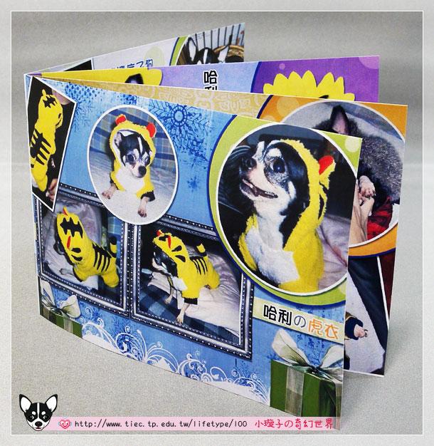 2010dog-minibook01.jpg