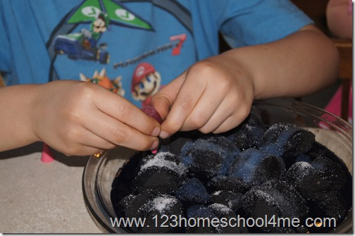 our fun homeschool science
