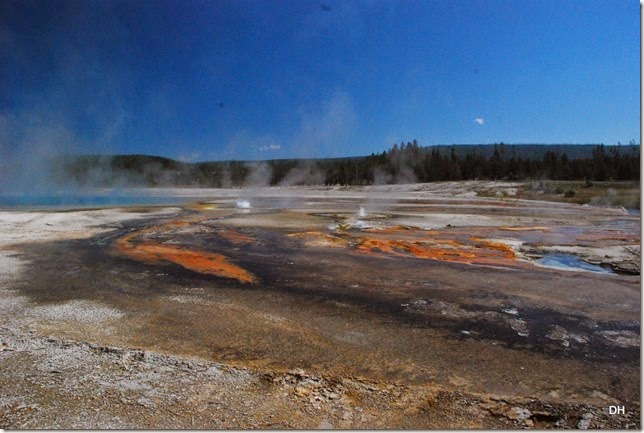 08-11-14 A Yellowstone National Park (295)