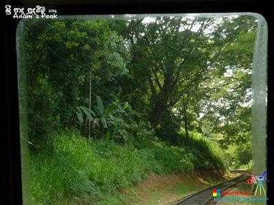 Adam's Peak 2014 by Ruwan Dileepa @ lessonforfree.blogspot (3)