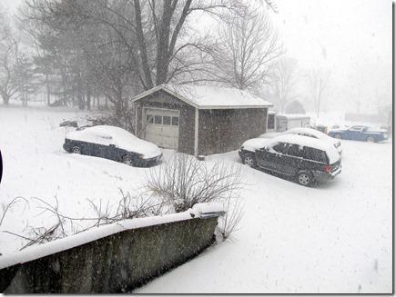 Snow02-21-12b