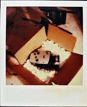 jamie livingston photo of the day November 28, 1984  ©hugh crawford