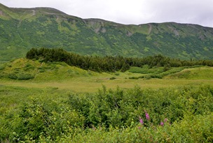 moraines at Turnagain Pass