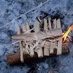 2011-hn-kevatretki-kiljava-2511.jpg