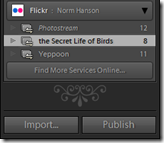 Example of publish services in lightroom