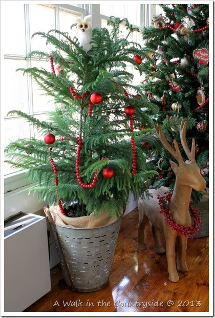 christmas tree in olive bucket