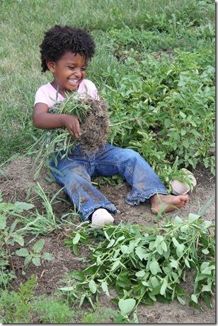 Gardening 690