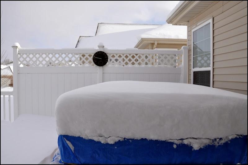 snow, 1-2012 002