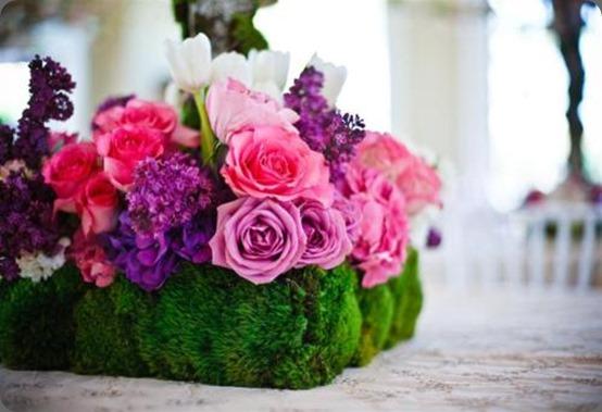 moss tumblr_lhjpxwfa411qb7m9i enchanted florist
