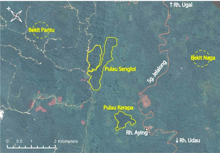 Rh. Ayingの集落共有の4つのプラオ Pualu Sengloiでは一度盗伐が入っており、その際に作られた伐採道路が真ん中に走っている。 Bukit Pantu, Bukit Nagaの正確な位置は要確認。