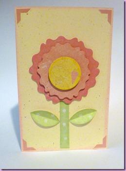 CARD 8 MARZO