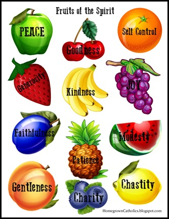 fruit definition fruits of the holy spirit