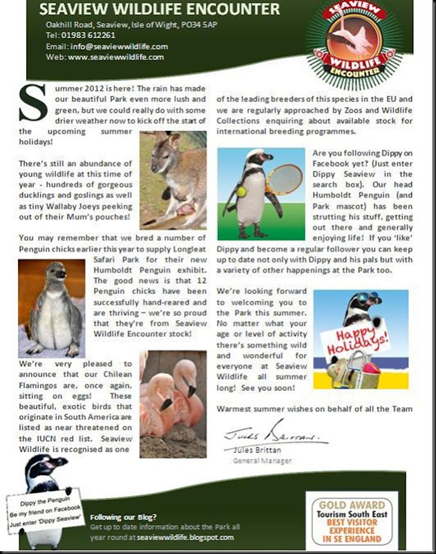 Blog summer newsletter page 1
