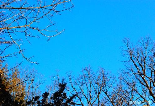 2. blue sky-kab