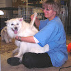 A day at the doggie spa 024.jpg