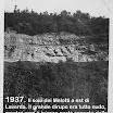 1937. Il soio dei Melotti.jpg