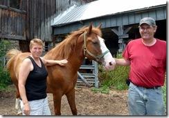 Horses make me nervous