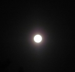 Blue moon full moon 5. 8.31.12