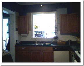 before.kitchen.sink
