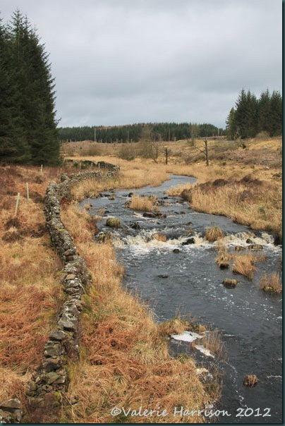 6-bladnoch-river